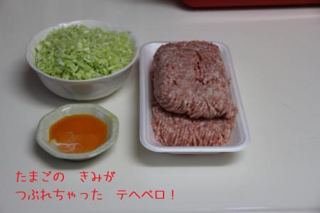 77_convert_20120408181000.jpg