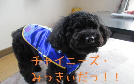 IMG_02302_convert_20120219155921.jpg