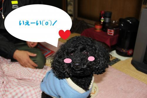 IMG_06342_convert_20111223164106.jpg