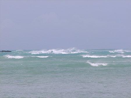 2009年10月4日今日のマイクロビーチ5