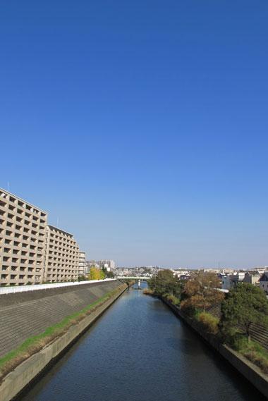 201111233.jpg