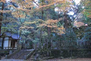 201112043.jpg