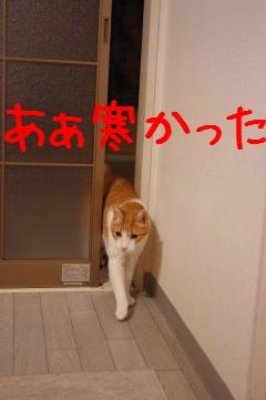 10_20100329213222.jpg