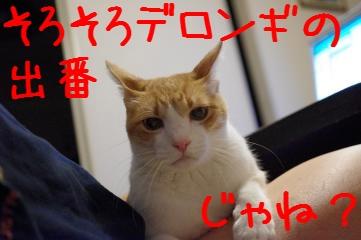 10_20100927211256.jpg