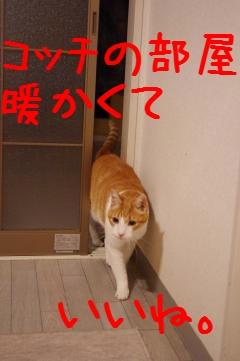 11_20100329213222.jpg