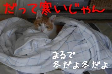 1_20100713221903.jpg