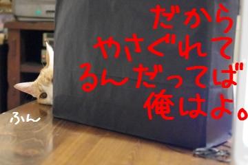 1_20100905203601.jpg
