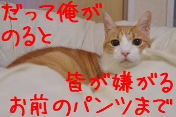 1_20101022201333.jpg