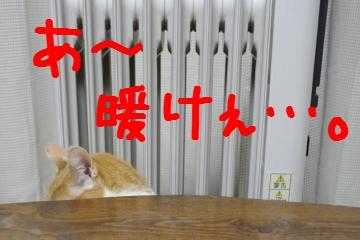 1_20110324213314.jpg