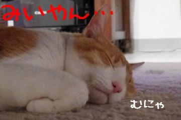 2_20100619231201.jpg