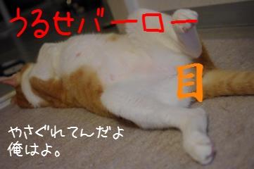 2_20100905094134.jpg