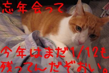 2_20101201204503.jpg