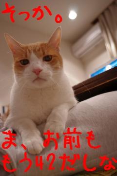 2_20110124193543.jpg