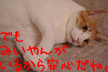 3_20100313215716.jpg