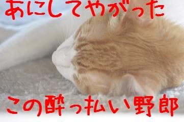 3_20100718075142.jpg