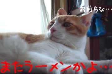 3_20100724161707.jpg