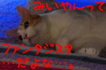 3_20100812231245.jpg