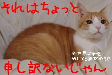 3_20101022201333.jpg