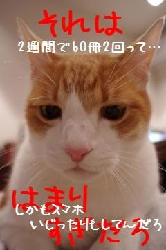 3_20110124193542.jpg