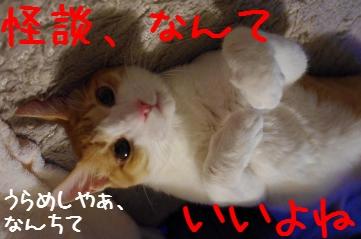 4_20100825220322.jpg