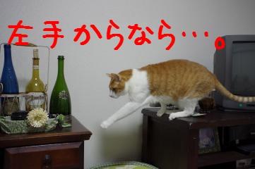 4_20110323210332.jpg