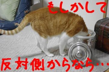 5_20110410185744.jpg