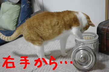 6_20110410185744.jpg