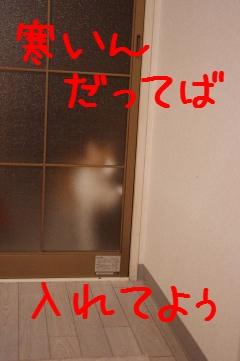 8_20100329213223.jpg