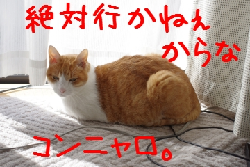 IMGP3887.jpg