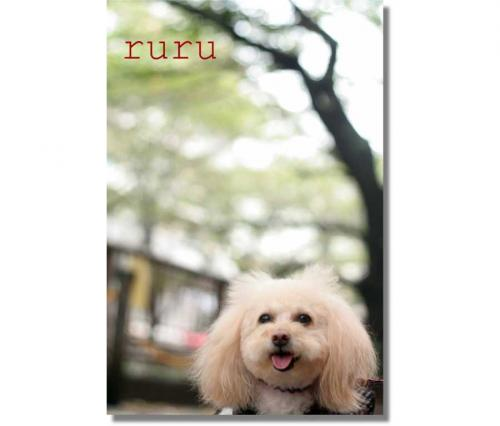 ruruちゃん-050