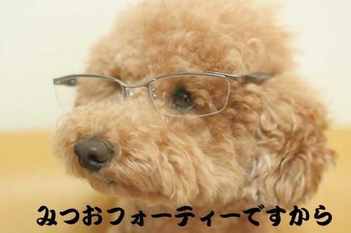 みつお眼鏡