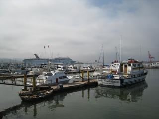 漁港にクルーズ船