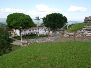 近所の学校