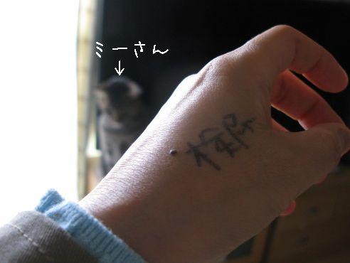 IMG_検尿