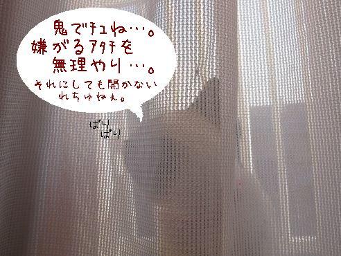 IMG_開けてぇ!