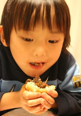 2009-11-12-はる