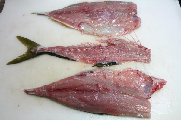 2010-1-12-魚2