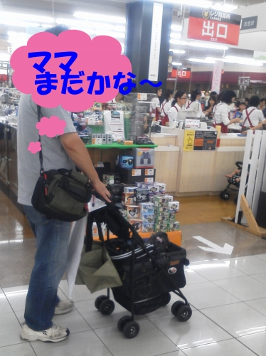 BLG-DSC110904047_edited-2.jpg
