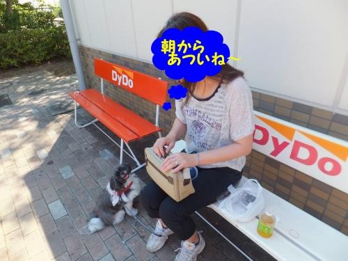 BLOGDSC110715007_edited-1.jpg