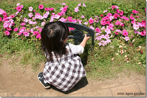 20100606_12.jpg