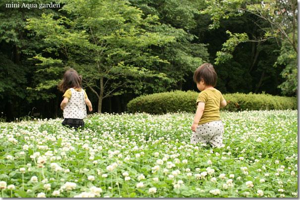 20100620_05.jpg