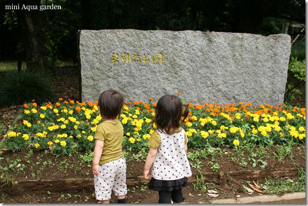 20100620_07.jpg