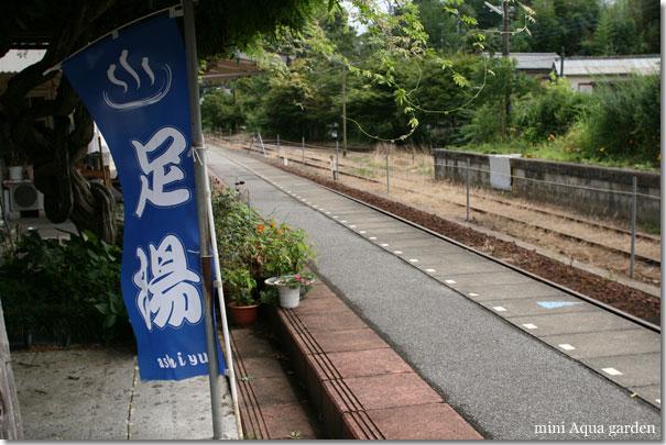 20100812_02.jpg