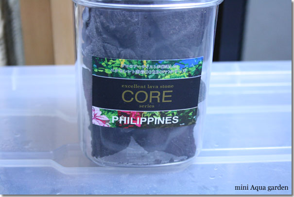 core_philippines20100206.jpg