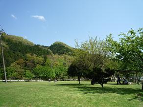 P1020068.jpg