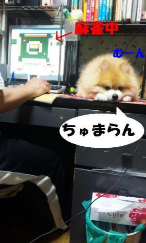 blog 068-001-1