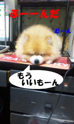 blog 066-001-1
