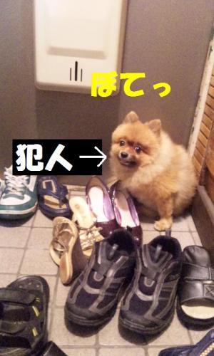 blog 073-001-1