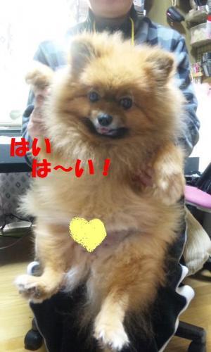 blog 075-001-1