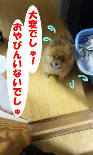 blog 109-001-1